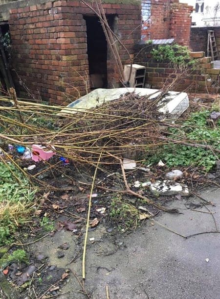Sheffield-Garden-Clearance